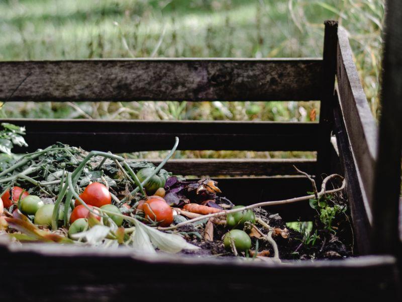 Camp Compost